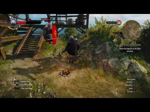 Crouching Tiger Hidden Geralt (Witcher 3: Wild Hunt)