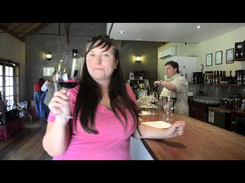 Wine tour of the Hunter Valley in Australia - Travel Yourself