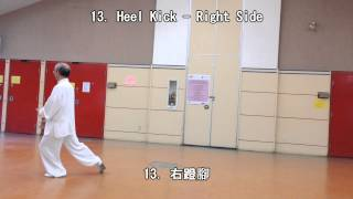 24 Form Tai Chi (Back View) (2013.09.01)