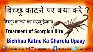 बिच्छू काटने पर क्या करें ? | Bichhoo Katne Par Gharelu Upay | Treatment Of Scorpion Bite in Hindi