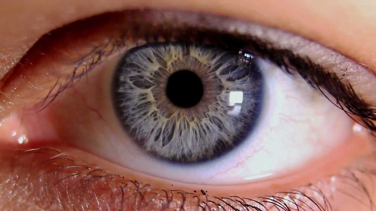 Macro Video of Human Eye & Iris - YouTube