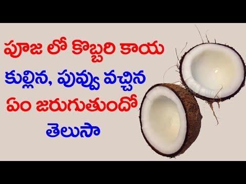 పూజలో కొబ్బరికాయ కుళ్ళిన పువ్వు వచ్చిన ఎం జరుగుతుందో తెలుసా | Coconut #9RosesMedia