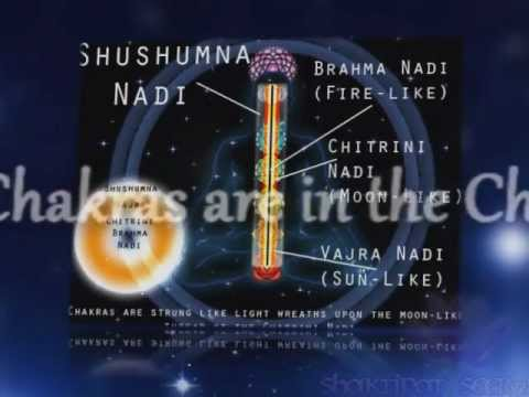 Shabdabrahman: The Divine Vibration (A Documentary On Ancient Vedic Science For A New Age) Music Videos