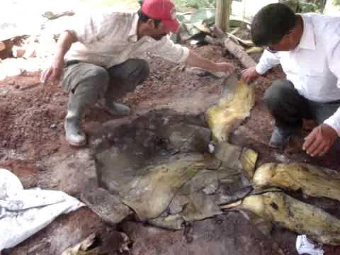 Barbacoa hidalgo youtube - Fotos de barbacoas de obra ...