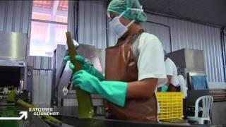 ARD Ratgeber Gesundheit 14.11.2010. Dr. Yael Adler spricht über Aloe Vera