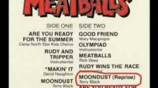 Todd hoffman meatballs