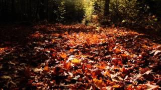 Ilya Gerus - Vague Hallucinations (Original Mix)