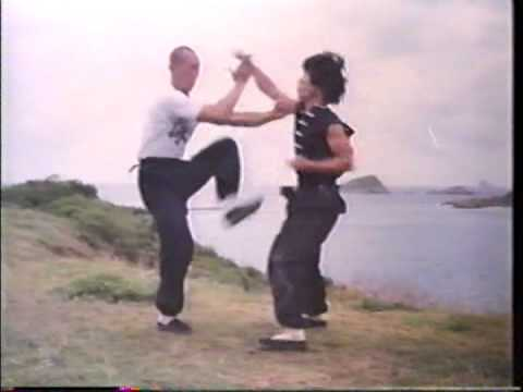 Wing Chun and Grandmaster IP Man