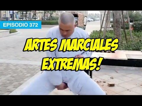 Artes Marciales EXTREMAS!! #mox #whatdafaqshow
