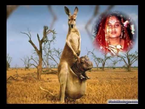 Buri Bangla Son Isaq Barse Bando Band Sajan Pyara Best Hindi Song-masud sathe video