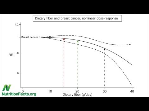 Fiber vs. Breast Cancer