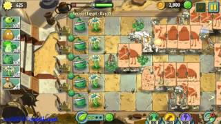 Egypt Day 17 18 - Plants vs Zombie 2 Walkthrough