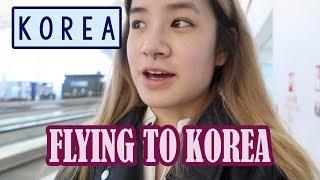 Arriving in KOREA & Meeting Gamja