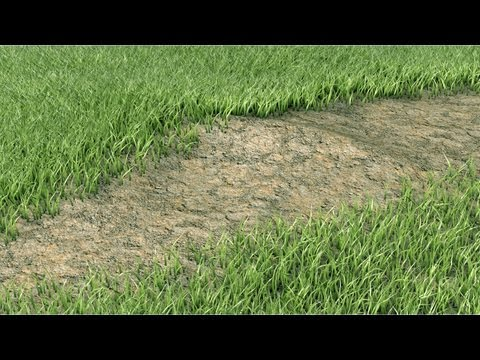 Cinema 4D R15 Architectural Grass Review
