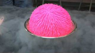 Giant Koosh Ball in Liquid Nitrogen!