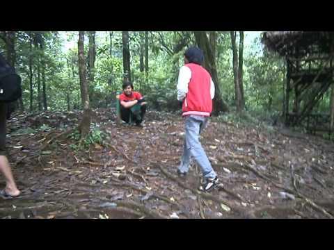 Tarzan X Probolinggo video