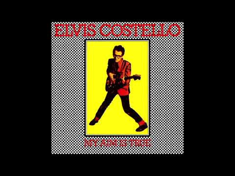 Elvis Costello   Waiting for the End of the World on HQ Vinyl with Lyrics in Description