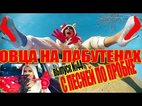 Овца на лабутенах. С ПЕСНЕЙ ПО ПРОБКЕ. Мария Шилова. Выпуск №44