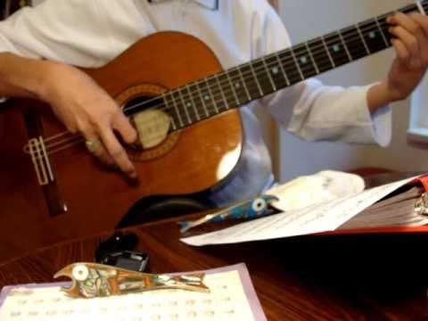 Hạ Trắng. Trịnh Công Sơn. Võ Tá Hân: Classical Guitar Notes. Harmonics. Âm Bồi
