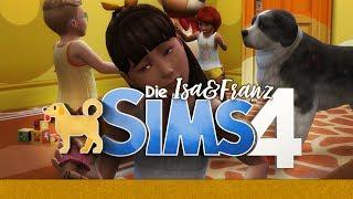Gassi gehen mit ALLEN Hunden?! #20 ? Die Sims 4 Hunde & Katzen