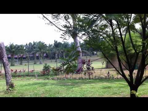 Hot Springs Perak Malaysia, July 2011