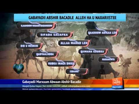 Abshir Bacadle GABAY