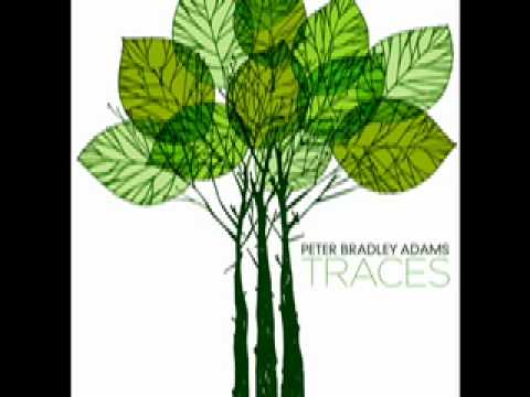 Peter Bradley Adams - I Cannot Settle Down