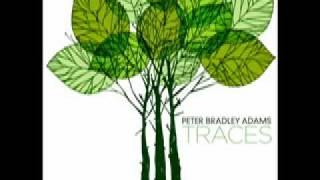 Watch Peter Bradley Adams I Cannot Settle Down video