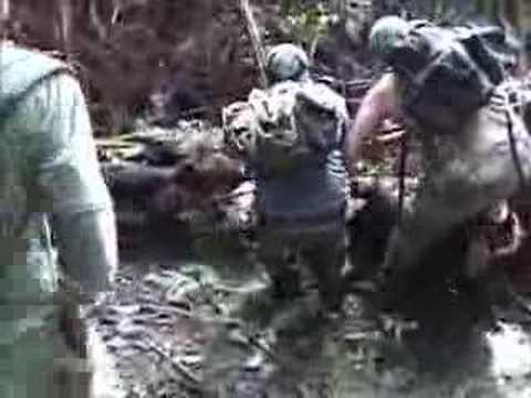 Dog&Knife Boar Hunting Hawaii, Part-1 Video