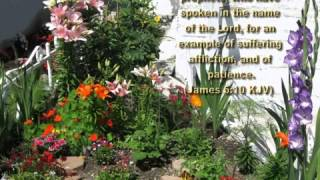 Pavangal Pokave Sabangal Neekave   Tamil Worship Song   YouTube
