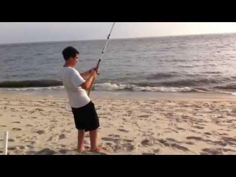 Sharks fishing the NJ Surf
