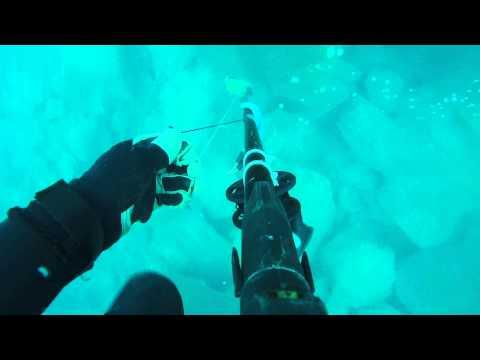 Chasse sous-marine Collo, Algeria abdou mero 3 Kg