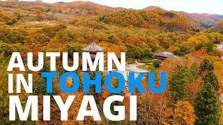 【紅葉の東北】宮城/Autumn in Tohoku:MIYAGI【空撮】