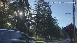 RAW: Steel balls strike cars on West Seattle street