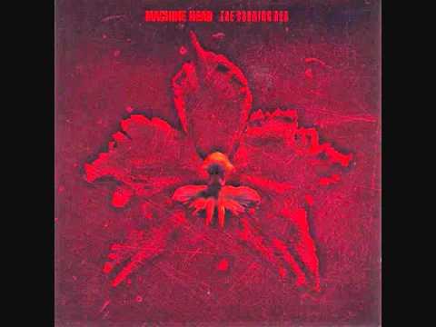 Machine Head - The Blood ,the Sweat Tears