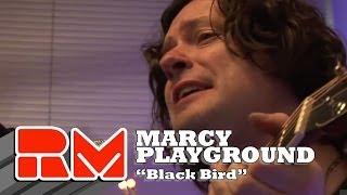 Watch Marcy Playground Black Bird video