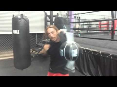 Pitbull boxing gym kauai hawaii