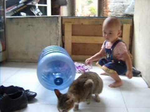 manusia vs binatang...(anita)