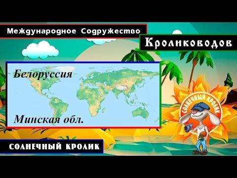 Кролики Белоруссия Минская обл.