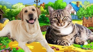 Các con vật cho bé thông minh nhanh biết nói hay nhất  Dạy bé học online