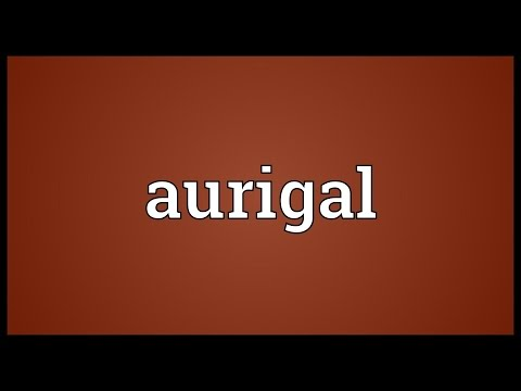 Header of aurigal