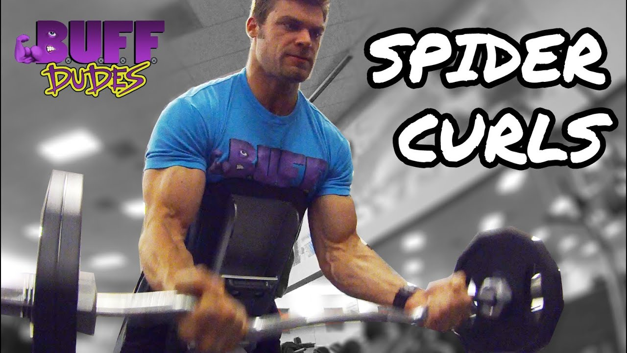 How to perform spider curls big biceps arms exercise for Buff dudes t shirt