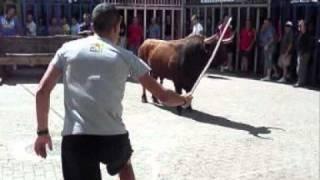 Prueba del toro