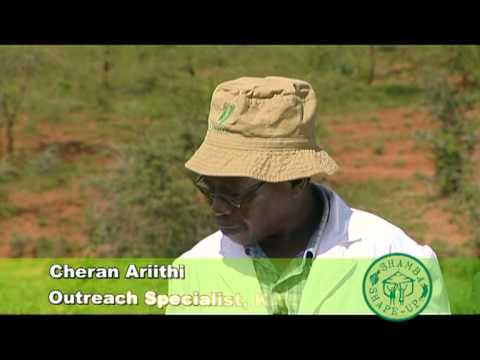 Series 1-Episode 2 [Arid Farming, Irrigation, Ploughing], Scene 2