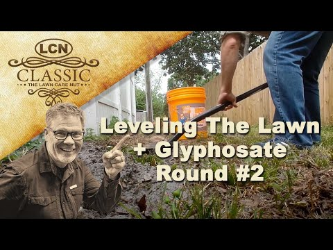 Leveling The Lawn + Glyphosate Round #2