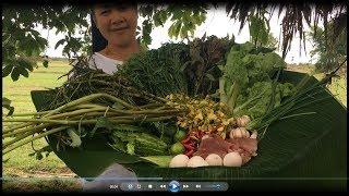 khmer cooking khmer lifestyle