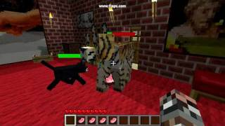 30 Second Minecraft: Mo-Creatures Healing BigCat