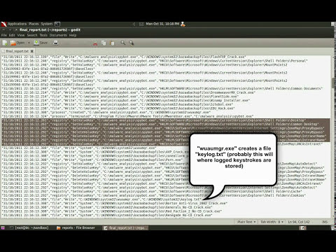 Demo1 - Sanbox Analysis of Spybot