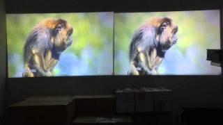 Download UNIC UC46 and UC40+ projector 3Gp Mp4