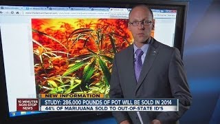 POT REPORT: Marijuana Data and Statistics in Colorado